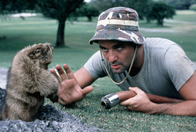 caddyshack.png